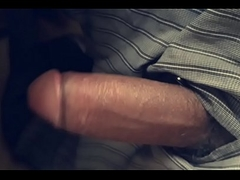 Indian cock gone wild