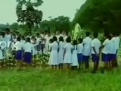 Beside oneself Fish - Sinhala BGrade Working Pellicle