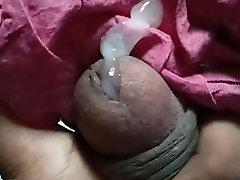 Squeezing Small Indian Horseshit far Jizz